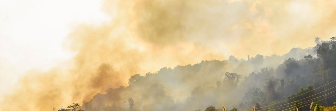 Get information about Glass Fire evacuation orders, warnings and road closures in Napa County