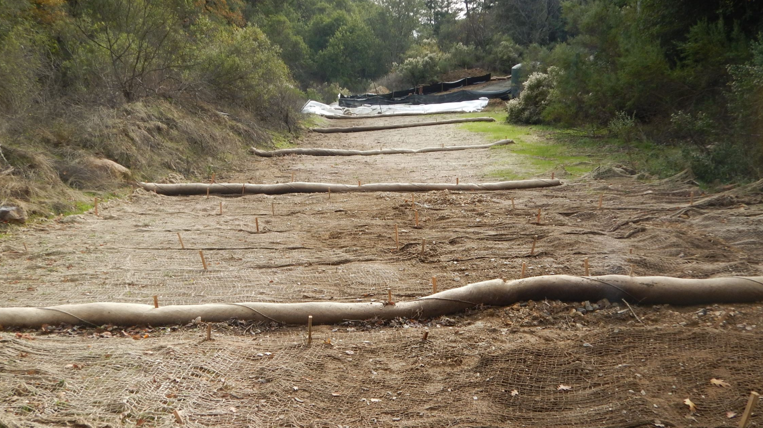 Photo of jute netting and straw wattle erosion control measures